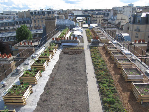 Look up, yards and vegetable patches take over the roofs of Paris!