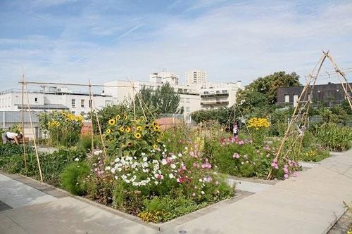 Les jardins et potagers sur les toits paris green for Jardin urbain green bar