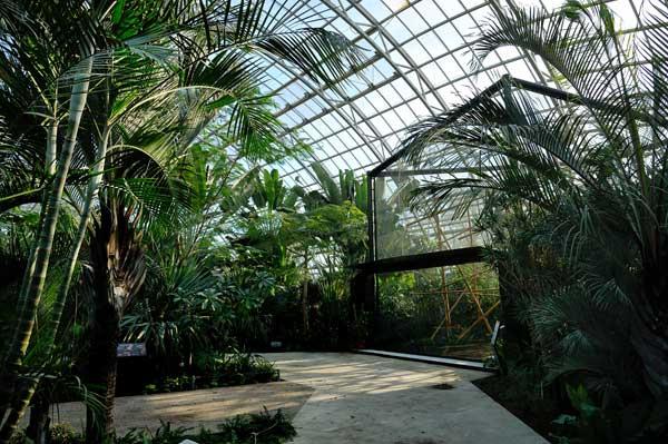 Grande-serre-zoo-de-vincennes-F-G-Grandin-MNHN-green-hotels-paris