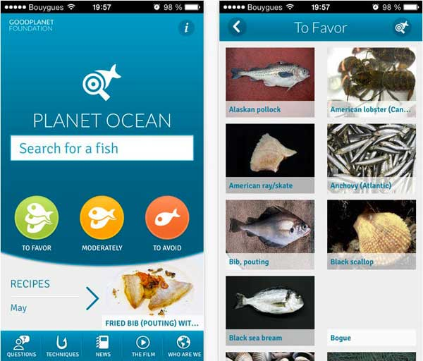 Planet Ocean: an app that helps you choose your fish
