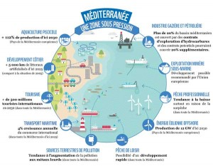 infographie-medtrends-mer-mediterranee-en-danger-wwf-france-green-hotels-paris-eiffel-trocadero-gavarni