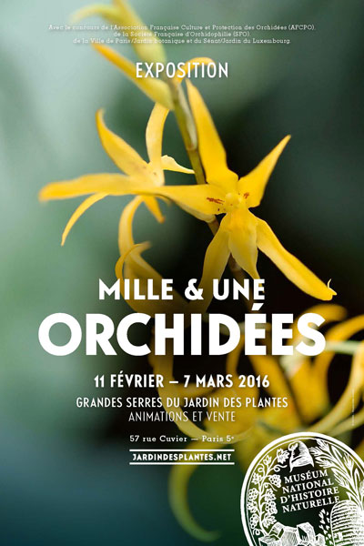 Exposition : Mille et une orchidées