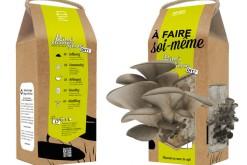 La Boîte à Champignons : des pleurotes au marc de café