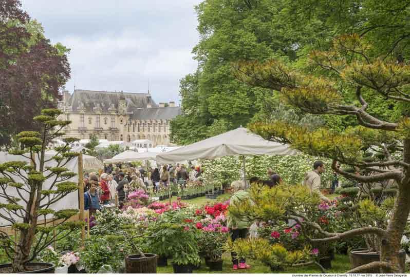 A la découverte des Journées des Plantes de Chantilly