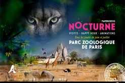 Vincennes Zoo welcomes its visitors in nocturnal!