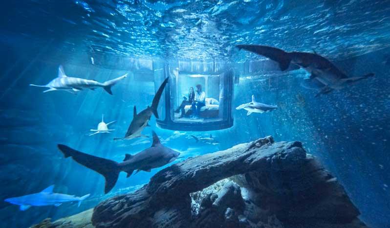 Découvrez les coulisses de l'Aquarium de Paris