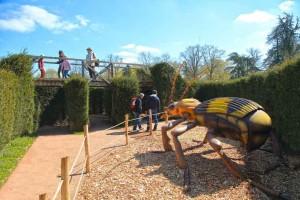 grand-defi-labyrinthe-thoiry-scarabee-photo-arthus-boutin-green-hotels-paris-eiffel-trocadero-gavarni