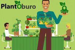 PlantOburo: when gardening gets settled at work