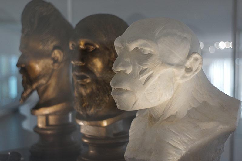 Exposition : Néandertal l'expo