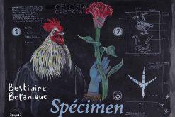 Exhibition: Bestiaire botanique