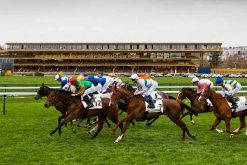 The ParisLongchamp hippodrome gets a makeover