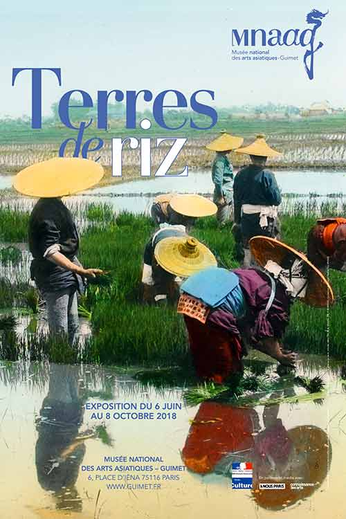 Exhibition: Rice Land