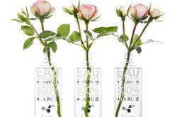 Kure Bazaar lance une eau dissolvante naturelle et hydratante à la rose