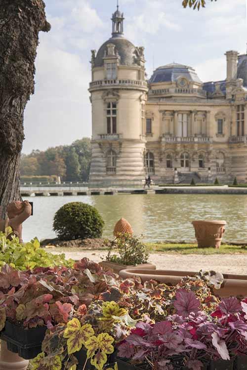 8e édition des Journées des Plantes de Chantilly
