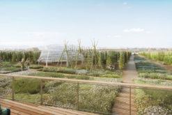 (Français) A Paris, on pourra cultiver ses tomates dans la plus grande ferme urbaine du monde
