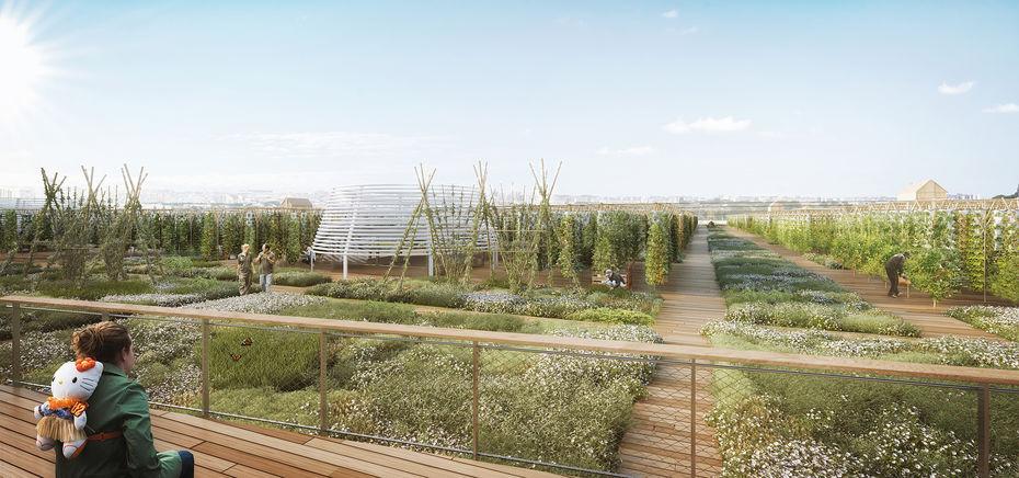 A Paris, on pourra cultiver ses tomates dans la plus grande ferme urbaine du monde