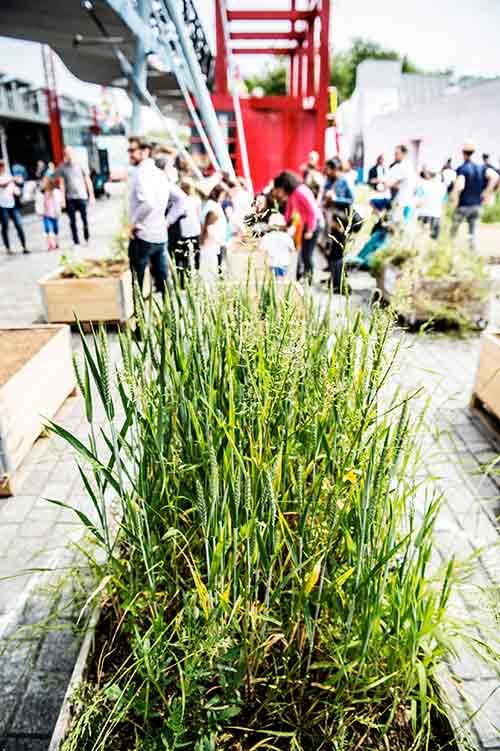 Jardins en Folies 2018: la Villette's kid-friendly nature festival!