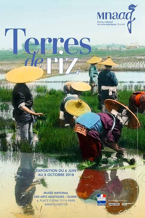 Exhibition: Rice Land