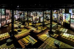 L'Atelier des Lumières offers 16 exceptional nocturnes